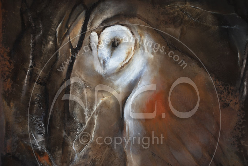 Animal paintings : Barn Owl Painting « Night encounter »