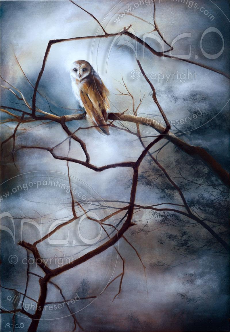 Wildlife paintings : Barn owl painting
