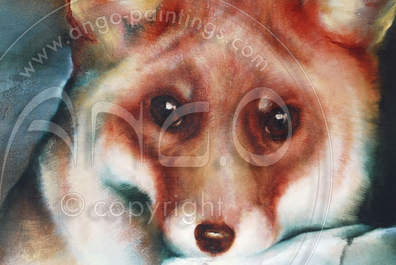 Wildlife Art : Fox Painting « Young female »