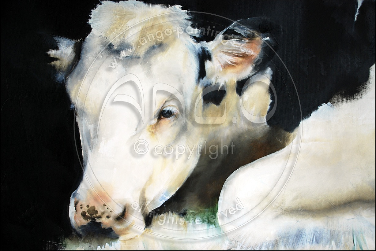 Animal paintings : Cow Painting « 6912 »