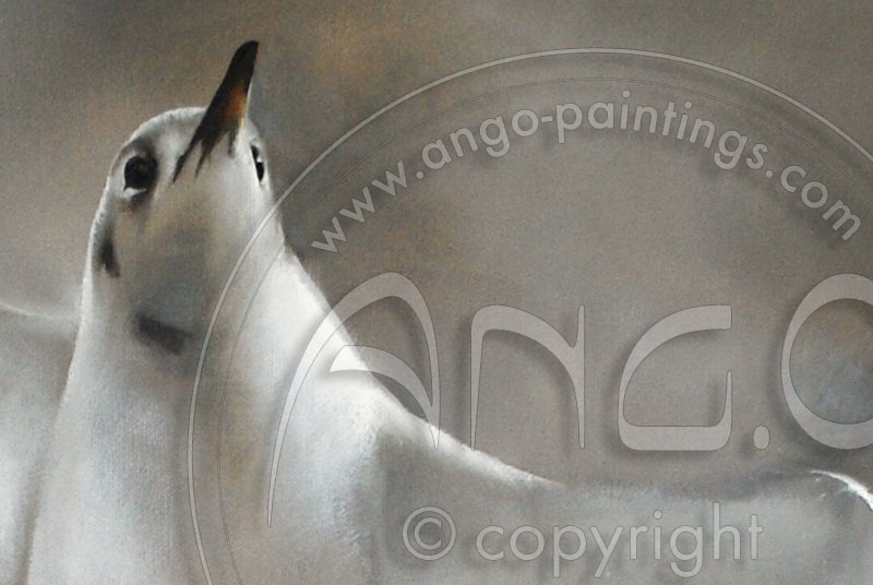 Wildlife Art : Blackheaded gull Painting « Windy day »
