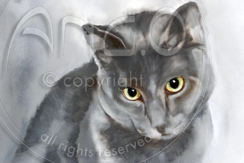 Wildlife Art : Cat Painting « Charlie », detail