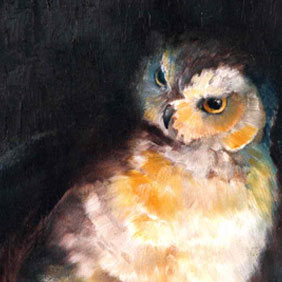 Animal paintings : Owl painting